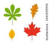 leaves set in flat style...   Shutterstock .eps vector #1441929953