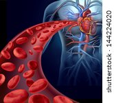 heart blood health with red... | Shutterstock . vector #144224020