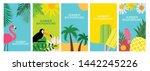 collection set of social media... | Shutterstock . vector #1442245226
