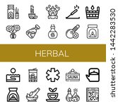 set of herbal icons such as... | Shutterstock .eps vector #1442283530