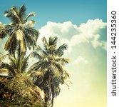 nature background in vintage... | Shutterstock . vector #144235360