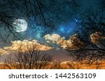 night sky background with stars ... | Shutterstock . vector #1442563109