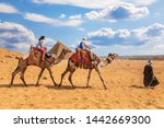Tourists Riding Camels Near Th...