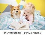 fun girl and dog corgi on the... | Shutterstock . vector #1442678063
