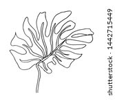 contour line drawing leaf of... | Shutterstock .eps vector #1442715449