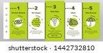 hurricane natural disaster... | Shutterstock .eps vector #1442732810