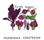 vector card with hand drawn... | Shutterstock .eps vector #1442793149