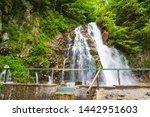 waterfall urlatoarea from... | Shutterstock . vector #1442951603