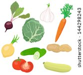 vegetable set | Shutterstock . vector #144298243