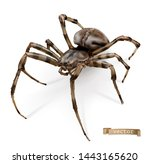 spider vectorized image. 3d... | Shutterstock .eps vector #1443165620