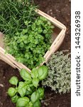 herbs prepared for planting.... | Shutterstock . vector #144326938