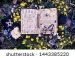 open manuscript with moon lunar ... | Shutterstock . vector #1443385220