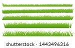 green grass border  isolate on... | Shutterstock .eps vector #1443496316