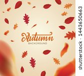 autumn background layout... | Shutterstock .eps vector #1443650663