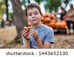 Boy Eating Cider Donut At The...