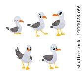 Set Vector Cartoon Gull In...