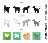 vector design of breeding and... | Shutterstock .eps vector #1444088030