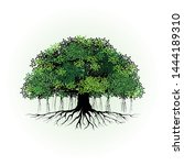 Tree Vector Illustration. Root...