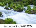 stream in green forest | Shutterstock . vector #144427774