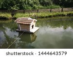Small Wooden House On River...