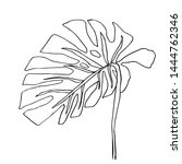 contour line drawing leaf of... | Shutterstock .eps vector #1444762346