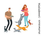 Stock vector volunteers and homeless dogs and cat vector illustration adoption and help pets dog and cat 1444893956