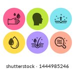 oil drop  clean skin and head... | Shutterstock .eps vector #1444985246