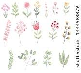 pastel watercolor botanical... | Shutterstock . vector #1444988879
