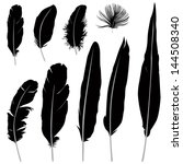 feather set. vector... | Shutterstock .eps vector #144508340