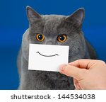 Stock photo funny cat portrait with smile on card 144534038