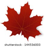 Red Maple Leaf On A White...