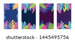 vector set of abstract tropical ... | Shutterstock .eps vector #1445495756