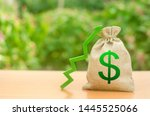 money bag with dollar symbol... | Shutterstock . vector #1445525066