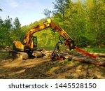 harvester machine felling... | Shutterstock . vector #1445528150
