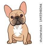 french bulldog cute sitting... | Shutterstock .eps vector #1445548346