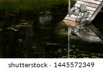 Painted Turtles Gathered On A...