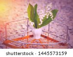 lilies of the valley and rusty... | Shutterstock . vector #1445573159