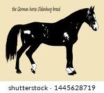 vector image  isolated black... | Shutterstock .eps vector #1445628719