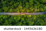 Forest Road  Aerial View Over...