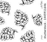 sketch pinecone pattern. hand... | Shutterstock . vector #1445911646