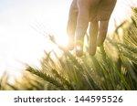 hand of a farmer touching... | Shutterstock . vector #144595526