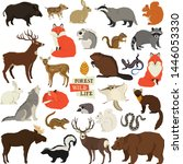 Vector Illustrations Of The...