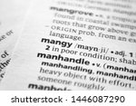 Small photo of Word or phrase Mangy in a dictionary