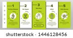 pollen allergy symptoms vector... | Shutterstock .eps vector #1446128456
