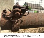 old used rusty weathered hose... | Shutterstock . vector #1446282176