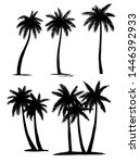set tropical palm trees plants  ... | Shutterstock .eps vector #1446392933
