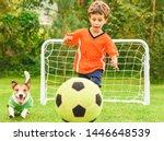 Kid In Orange Kit And Dog...