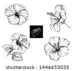 detailed hand drawn ink black...   Shutterstock .eps vector #1446653033