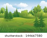landscape  summer green forest... | Shutterstock .eps vector #144667580