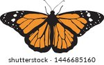 Stock vector  monarch butterfly illustration on white background vector 1446685160